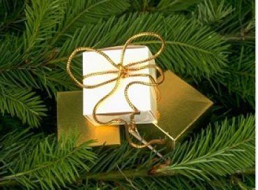 Pour nos ados à Noël ; cadeau ou euros ?