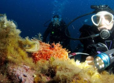Monaco Green au mois d'août : cap sur la Méditerranée
