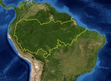 Préserver la forêt amazonienne