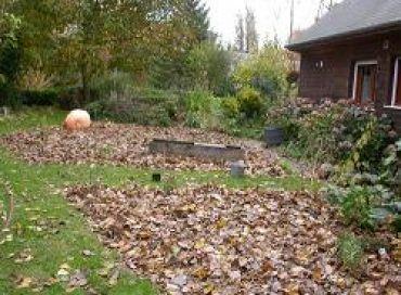 Les feuilles mortes ne se ramassent plus à la pelle
