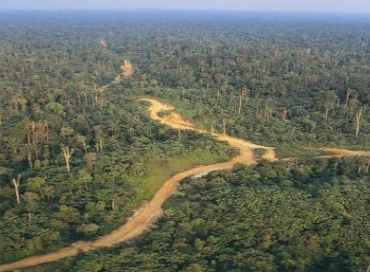 Gestion communautaire de la Réserve Naturelle d'Itombwe en RDC