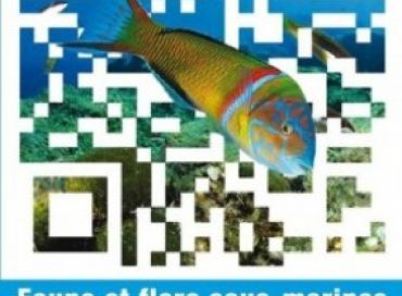 La faune et la flore sous-marines de la Méditerranée en réalité augmentée