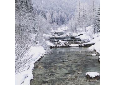Comment passer un hiver  bien au chaud et serein ?
