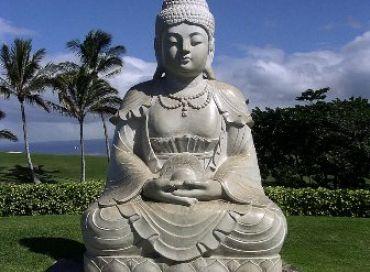 Un conseil à méditer