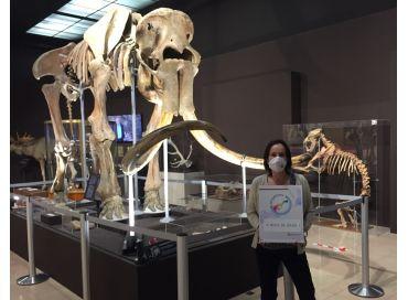 La préhistoire s'engage pour l'environnement au Musée d'Anthropologie Préhistorique de Monaco