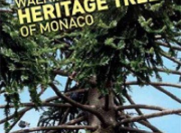 A la découverte des arbres patrimoniaux, de la mobilité douce ou de l'art des peuples aborigènes, c'est le programme éclectique du mois d'Avril