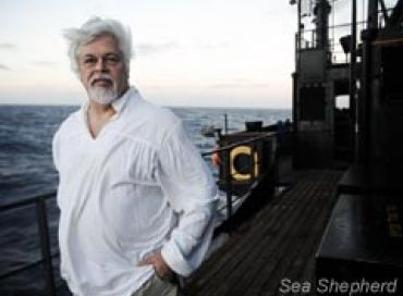 Episode 1: Les origines de Sea Shepherd