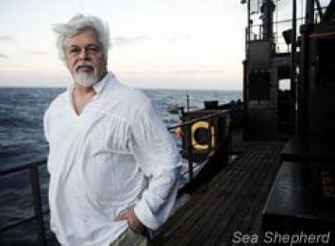 Episode 1: Les origines de Sea Shepherd