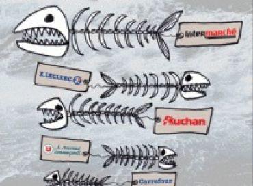 N'achetez plus les poissons de pêche profonde !