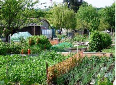 Jardins urbains : diversité et utilités