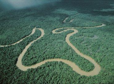 La préservation des forêts du Pérou amazonien