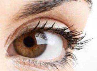 La régénération des yeux