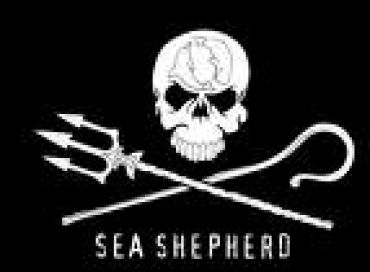 Seashepherd Episode 21: Mission Antarctique