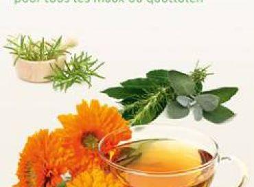Le cassis : l'anti-inflammatoire vert
