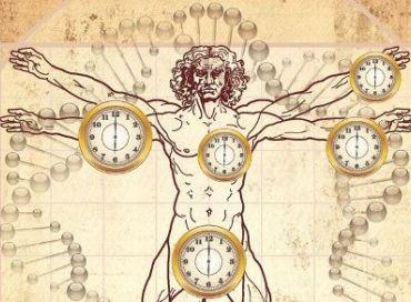 Notre corps est en perpétuel mutation