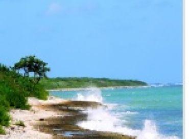 Bien préparer son voyage sous les tropiques