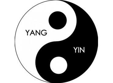 Découvrez le Yin et le Yang