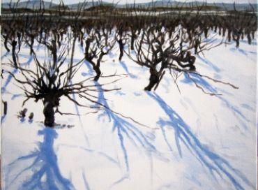 A Saint Jean de Serres ils ont de la vigne dans les idées