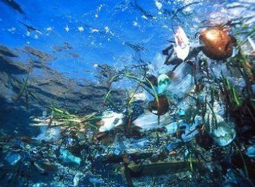 Un Sixième continent fait de plastique