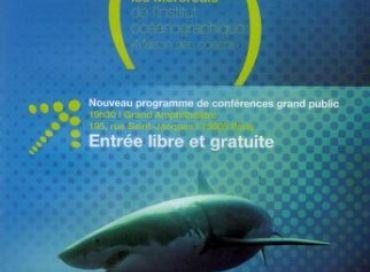Requins: Au delà du malentendu