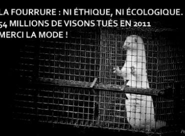 Anti-fourrure à Monaco