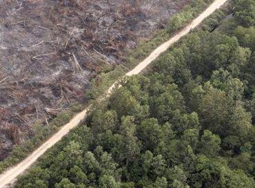 APP change radicalement sa politique écologique