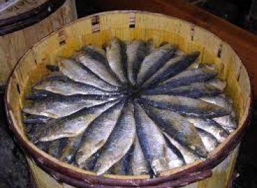 Les sardines de Cornouailles