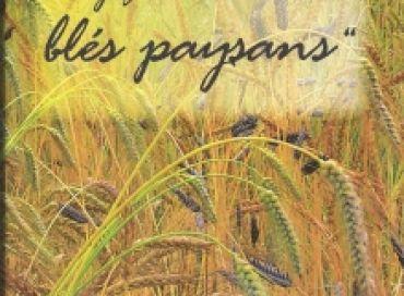 Voyage autour des blés paysans
