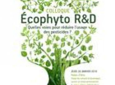 Ecophyto R&D : 30% de pesticides en moins c'est possible !