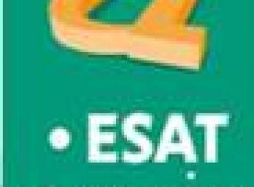 ESAT Avenir : accompagner les travailleurs handicapés