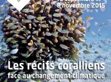 Exposition « Les récifs coralliens face au changement climatique »
