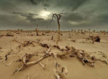 Le fond vert pour le climat : des promesses et du vent ... pour le moment