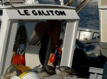 Vie quotidienne d'un pêcheur en Méditerranée
