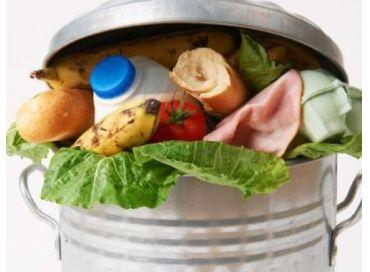 Les Jeunes Reporters de l'Environnement luttent contre le gaspillage alimentaire