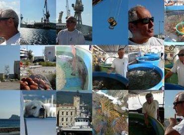 Gérard Carrodano, défenseur de la petite pêche en Méditerranée