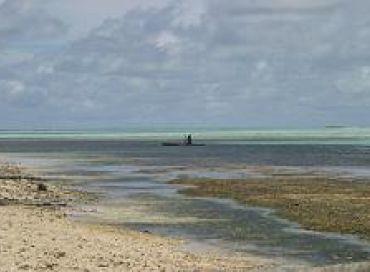 Les îles Carteret sont en danger