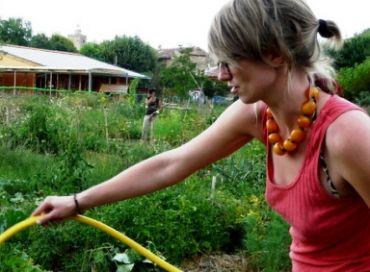 Un jardin où on partage plus que des légumes