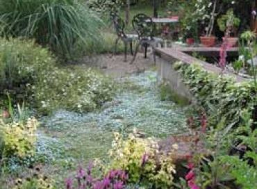 La folie du jardin