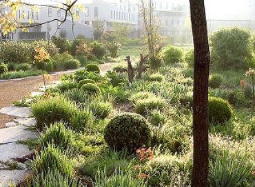 Le jardin en mouvement de Gilles Clément et les plantes envahissantes