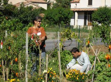 Les jardins solidaires du Pigeonnier Barbejas