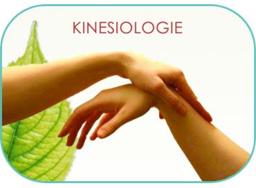 A la découverte de la kinésiologie...