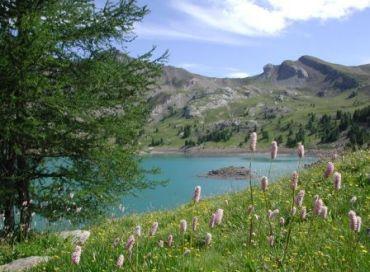 Les Alpes de la Mer pourraient être classées par l'UNESCO