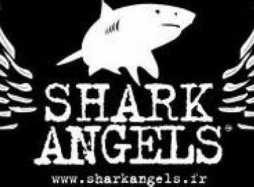 Shark Angel