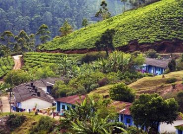 Made in India : le laboratoire écologique de la planète