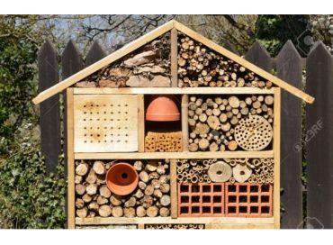 La sauvegarde des insectes pollinisateurs par les Jeunes Reporters pour l'Environnement
