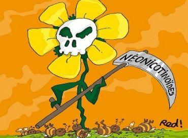 Les néonicotinoïdes, karcher de la biodiversité !