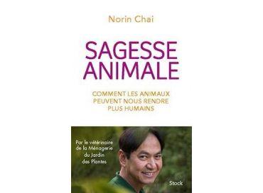 Découvrons la sagesse animale avec Norin Chai