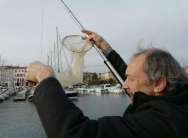 L'observatoire citoyen du plancton