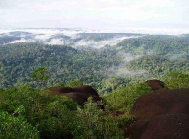 Préserver le plateau des Guyanes