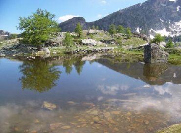 Le Parc national du Mercantour : une destination d'écotourisme